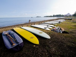 What's the best SUP for me?